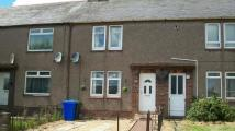 Terraced house to rent in Ravenscraig Road...