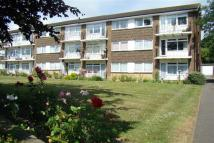 Flat to rent in Park Court, Burgess Hill