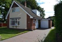 3 bedroom Detached house for sale in Beech Avenue, Rode Heath