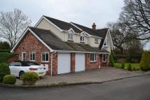 4 bedroom Detached home for sale in Rowan Close...