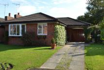 2 bed Bungalow for sale in Harpur Crescent, Alsager