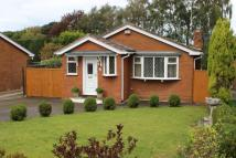 3 bed Detached Bungalow in Spencer Close, Alsager