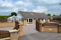 Bungalow in Crewe Road, Alsager