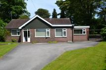 3 bed Detached Bungalow for sale in Sandbach Road South...