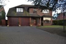 Detached house in Lodge Road, Alsager