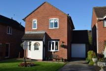 Hall Drive Detached house for sale