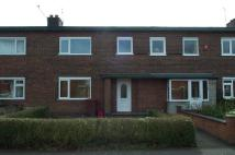 Longview Avenue Terraced property to rent