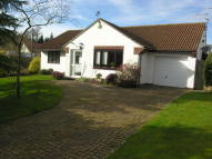 3 bedroom Detached Bungalow for sale in Manor Farm Close...