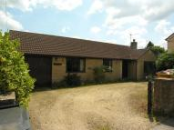 3 bed Detached Bungalow to rent in Chaffcombe Lane, Chard...