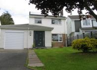 Detached property to rent in Modbury, Devon
