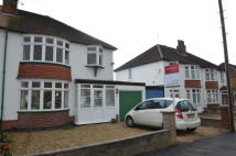 Gartree Road semi detached property to rent