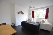 Flat Share in Stoughton Road...