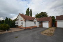 Detached Bungalow in Lindum Close, Syston...