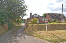Detached Bungalow for sale in Buxton Road, Aylsham