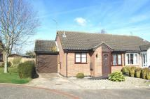 Semi-Detached Bungalow for sale in Lancaster Gardens...
