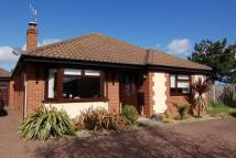 Detached Bungalow in Columbine Drive...