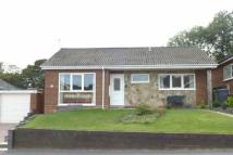 Detached Bungalow in Woodland Rise West...