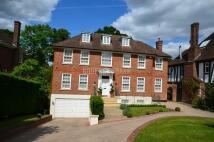 Detached property to rent in Pine Grove, Totteridge