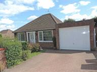 2 bed Detached Bungalow to rent in Park Avenue, Dunston...