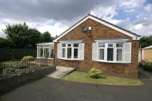 Rosemount Court Detached Bungalow for sale