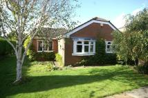 Detached Bungalow in Mansfield Court...