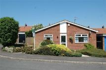 Detached Bungalow for sale in The Pastures, Calverton...