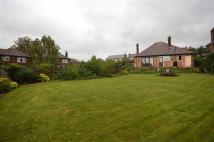 Detached Bungalow for sale in Gedling Road, Carlton...
