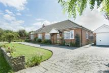 Detached Bungalow in Hazlemere Road...