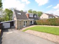 4 bed semi detached house to rent in Berry View, Berry Brow...