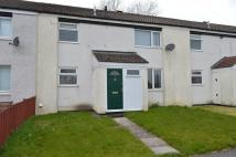 Terraced house to rent in 31 Rutland Close...