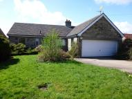 Detached Bungalow in 110 Colburn Lane...