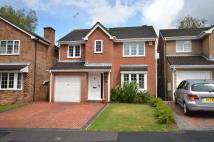 Detached house in EDEN ROAD, Southampton...