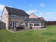 4 bed Detached home in Callaghan Crescent...