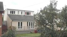 Bungalow for sale in Newton Road, STRATHAVEN
