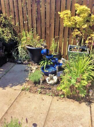 Garden - Pictures