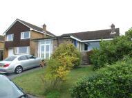 Detached Bungalow for sale in Frampton Road, Pimperne...