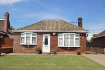 3 bed Detached Bungalow for sale in CRIDLING PLACE...