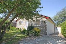 Detached Bungalow for sale in Springbrook Close...