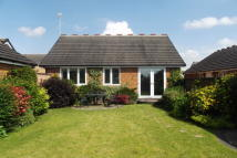 2 bed Bungalow to rent in Barberry Way, Ravenfield