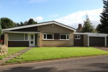 3 bed Detached Bungalow to rent in Sledgate Lane, Wickersley