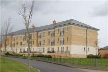 Heald Court Flat to rent