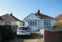 Detached Bungalow in Hamworthy