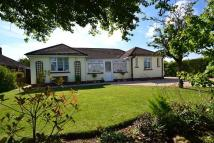 3 bed Detached house in Wool