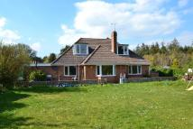 Detached property for sale in Wareham