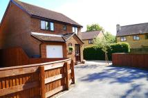 4 bedroom Detached house for sale in Bere Regis