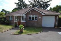 Detached Bungalow for sale in Sandford