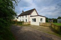 Bere Detached property for sale