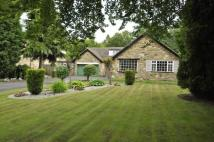 3 bed Bungalow in South Wood, Ling Lane...