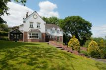 Detached property for sale in Hillside Court, Hillway...