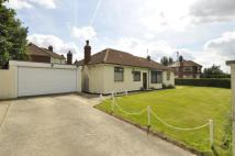 Bungalow in Primrose Lane, Halton...